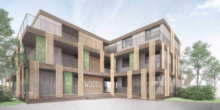 Visualisierung woods